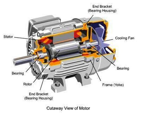 Thesis on induction motor design